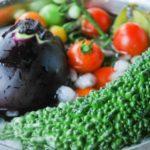 栄養満点!夏野菜を使ったおすすめレシピ10選