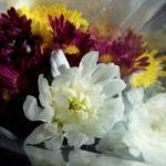お墓の花の選び方